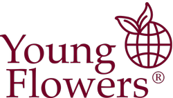 Youngflowers